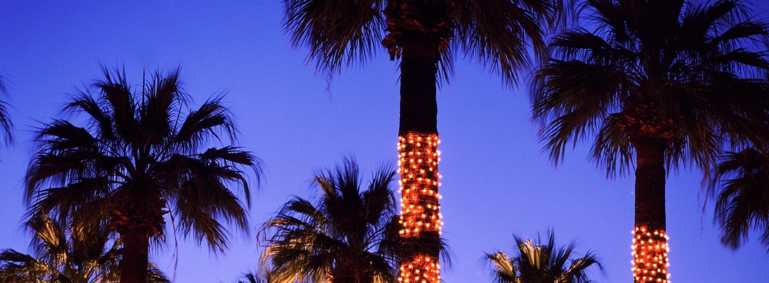 Luces y Mangueras De Navidad