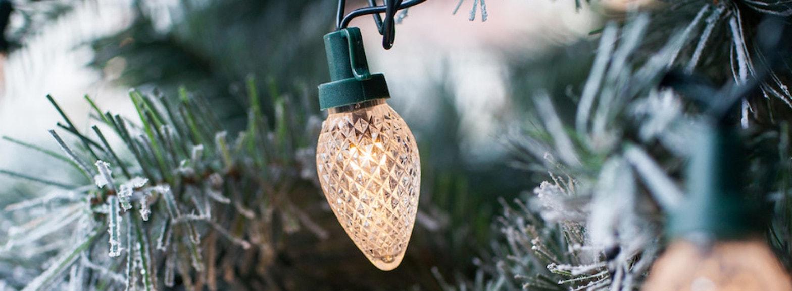 Decoracion y Luces de Navidad